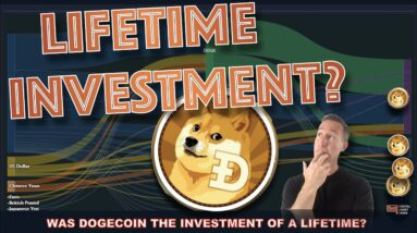 WAS DOGECOIN THE CRYPTO INVESTMENT WE'RE ALL MISSING OUT ON?